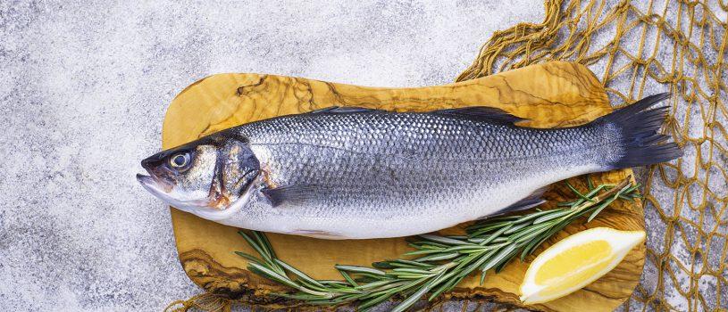 Продвижение рыбного магазина в Инстаграм
